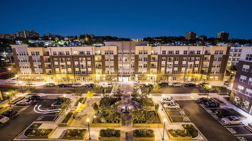 DC Living, Alexandria Pricing - Alexandria - Byt