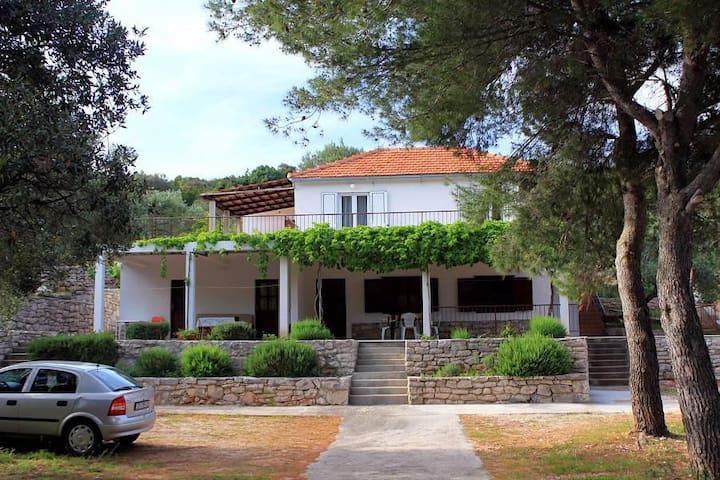 Two bedroom apartment near beach Uvala Zaraće, Hvar (A-2066-b) - Gdinj - Apartamento