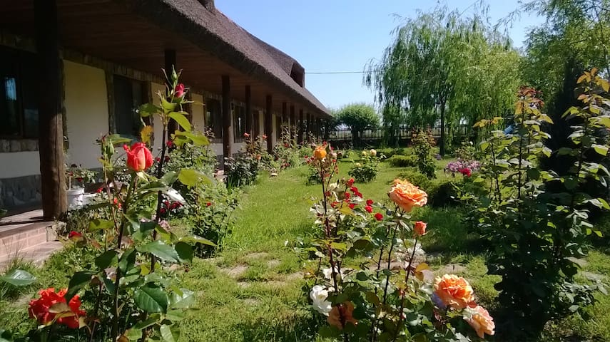 Traditional rooms in the heart of Danube Delta - Murighiol - Byt