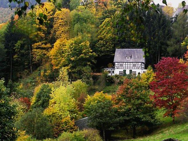 Winterberg - Schmallenberg - Condo