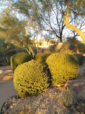 Desert Haven at Carefree - Carefree - Kondominium