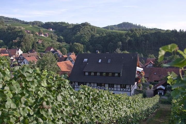 Herrliche Wohnung mit Blick auf die Weinberge