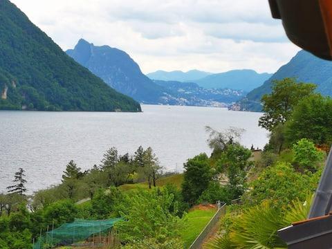 可观赏卢加诺湖景色的翻新公寓