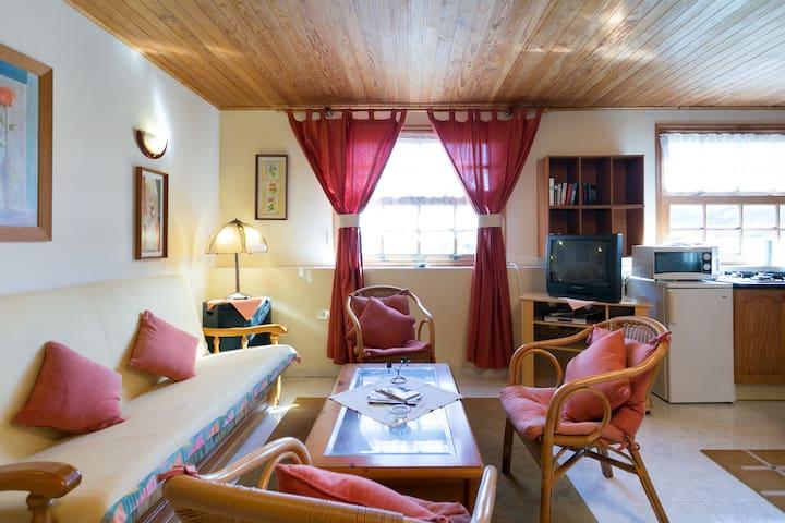 FINCA JARDIN, pool, Teide-view - Icod de los Vinos - Apartment