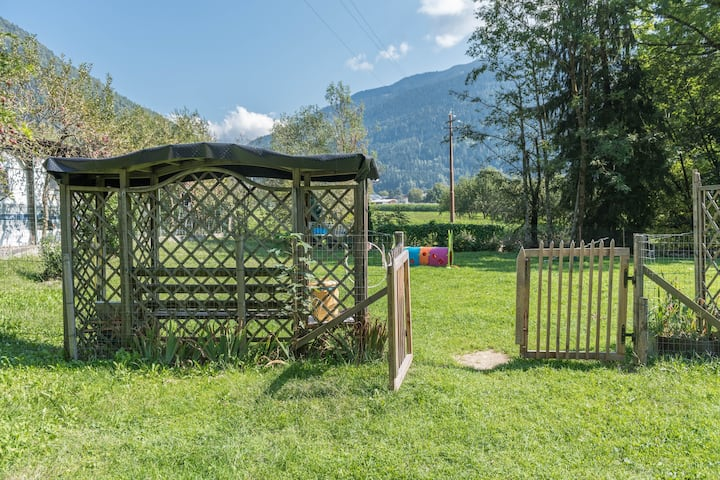 """Beautiful """"Appartamento Adamello 12"""" with Mountain View & Wi-Fi; Parking Available, Pets Allowed"""