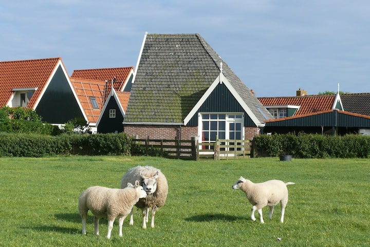 Guesthouse in a converted sheep barn in Den Hoorn