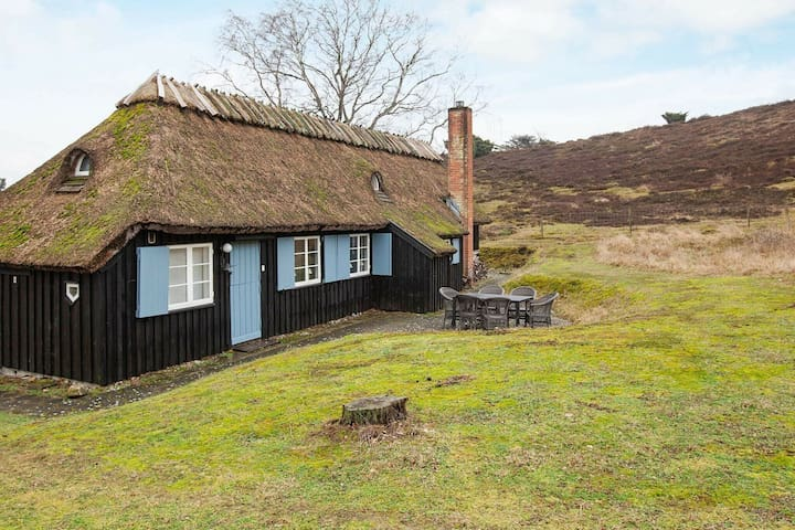 Rustic Holiday Home in Hovedstaden with Terrace