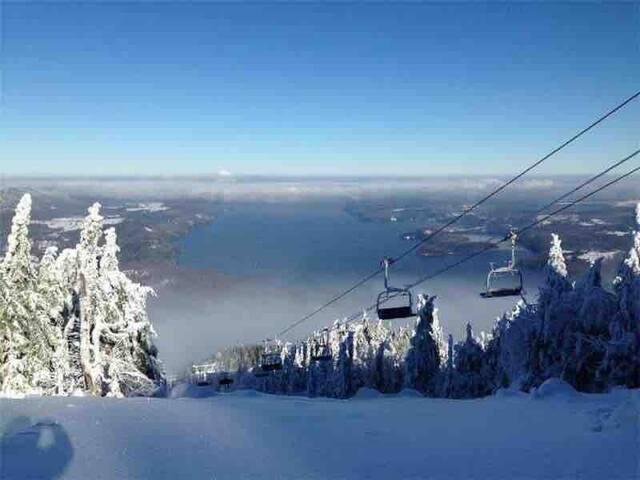 Skier l'Estrie. Condo 4 1/2 à Magog.