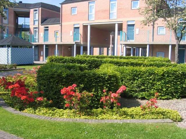 Lejlighed ved Aalborg universitet - Aalborg