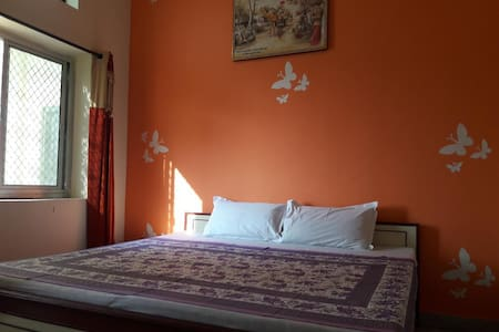 Best Stay in Keshav Palace  Pushkar