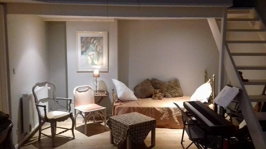 Cosy apartment in Ixelles
