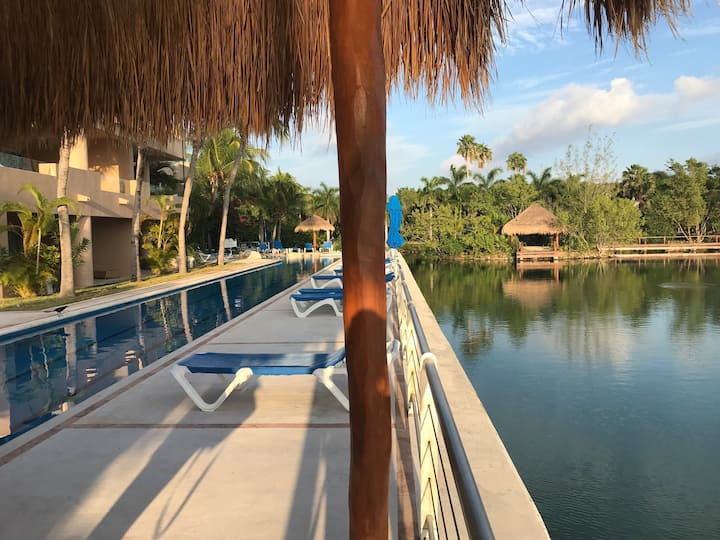 Portobello w/ kayaks & hotel like cleaning service