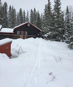 Stor og trivelig hytte i Teveldalen - Meraker - 小木屋