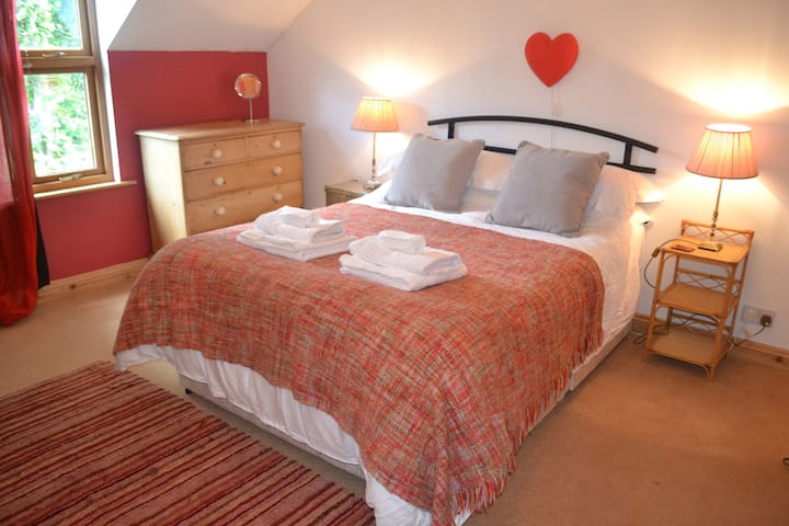 Lovely large and single rooms in beautiful house.