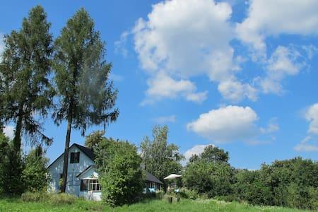 Siedlisko Modrzewiowe Wzgórze