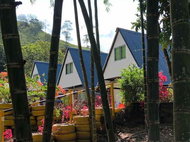 Habitación privada en La Cabañita Santuario