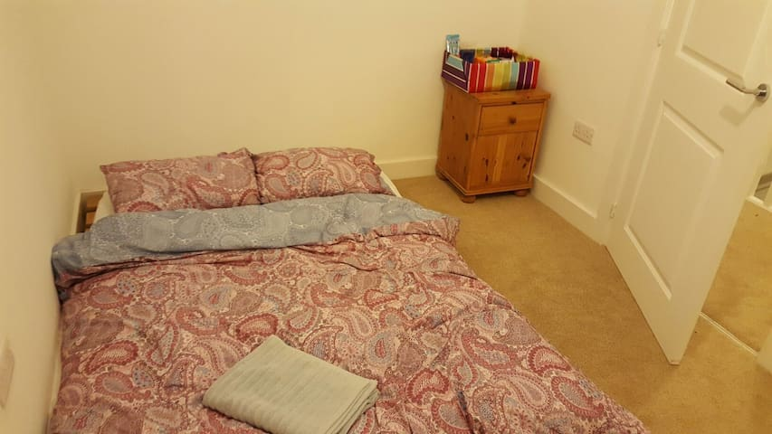 Spare room needs a sleep buddy - manchester  - House