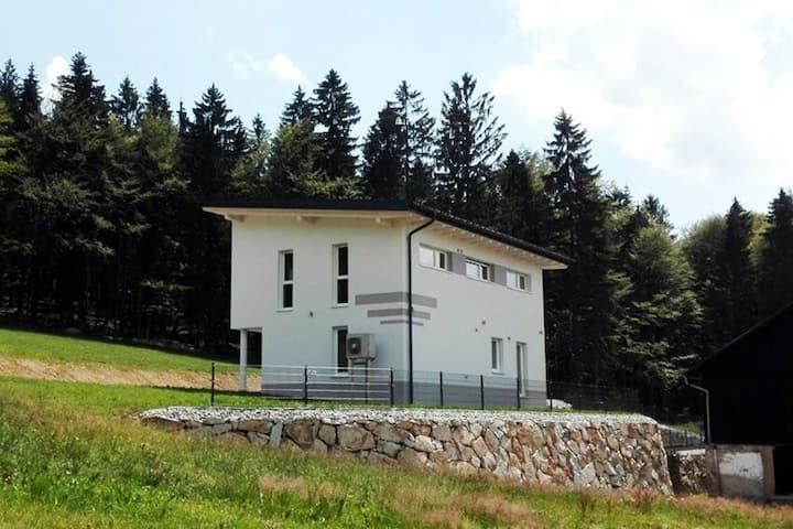 Ferienhaus Grobauer 2