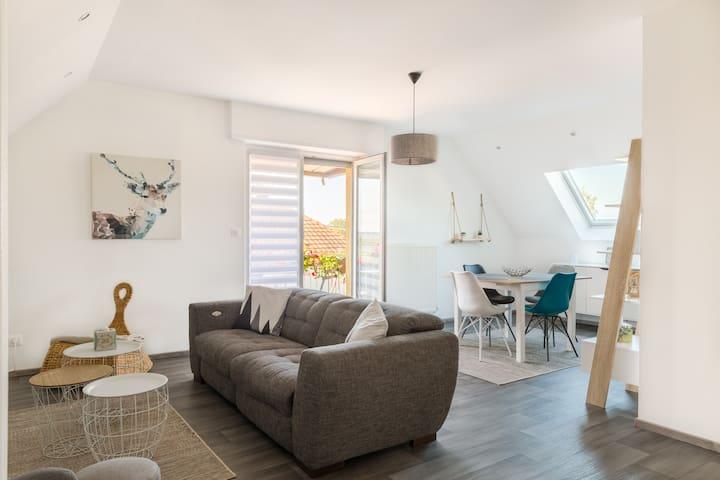 Appartement cosy et calme à proximité de COLMAR