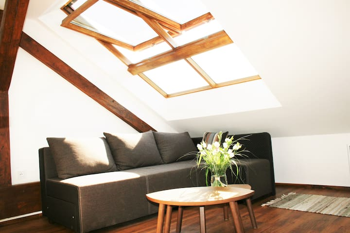 Apartment Twiggy - Praha - Apartemen