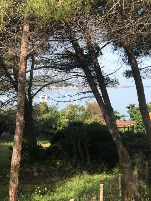 Vue sur la Presquile d'Isolella