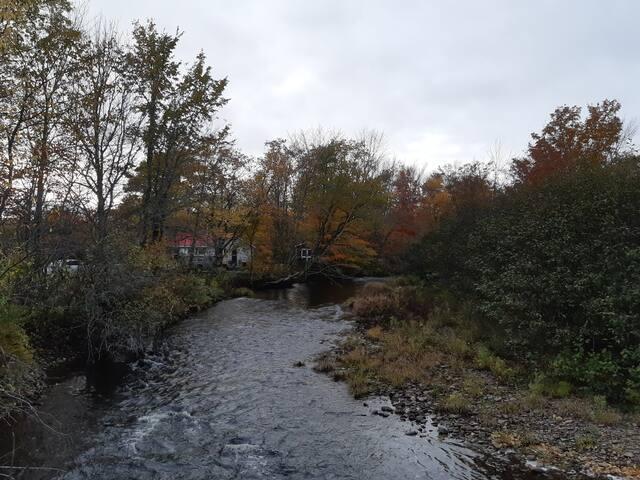 Rustic River Retreat