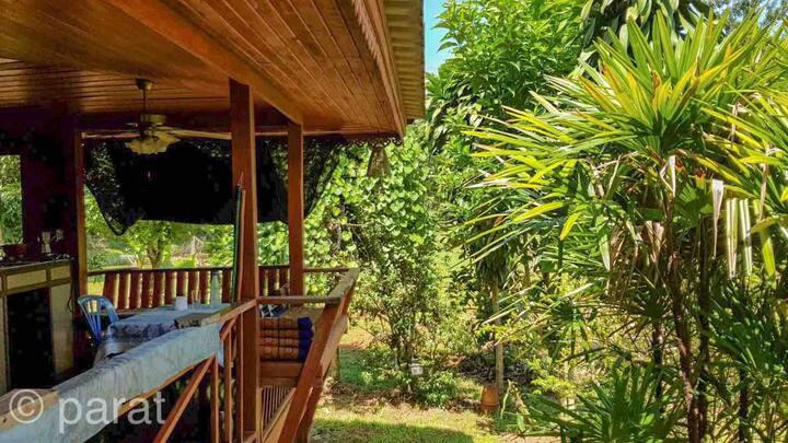 Chiangrai nice teakwood cabin near airport.