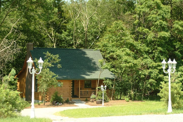 Wild Rose - Secluded Cabin Getaway with Hot Tub, Kitchen, and Fireplace