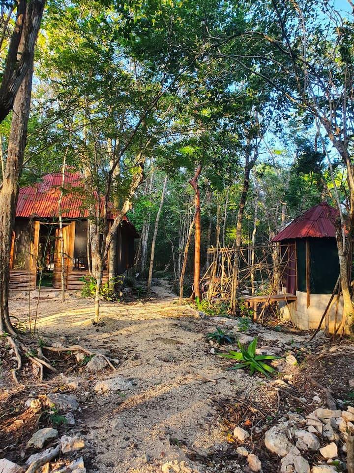 Un espacio único en la selva de México, mágico