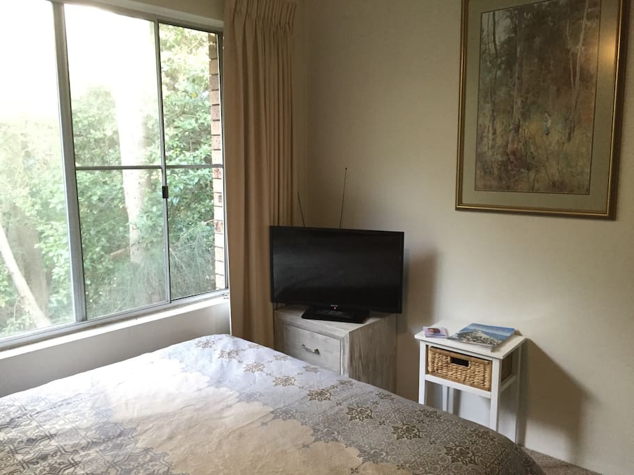 Your room complete with Queen medium-firm bed, ceiling fan, TV and leafy outlook.