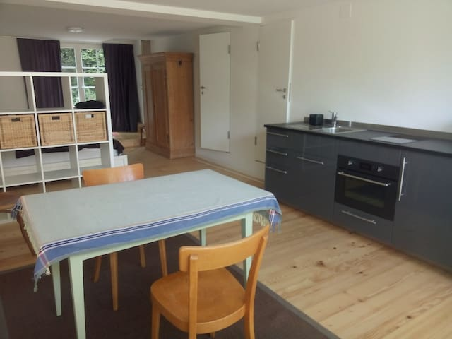 Spacious, cosy studio flat close to Bale - Arlesheim - Appartement