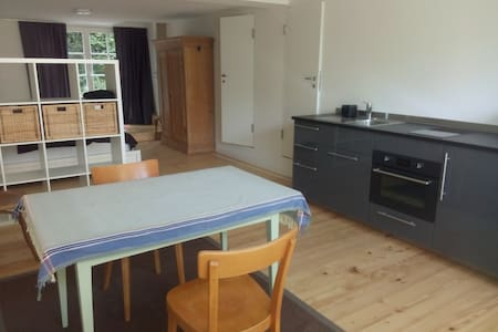 Spacious, cosy studio flat close to Bale - Arlesheim - 아파트
