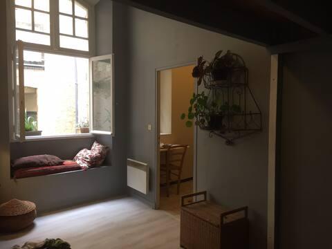 Studio 39 m2, centre historique d Auch