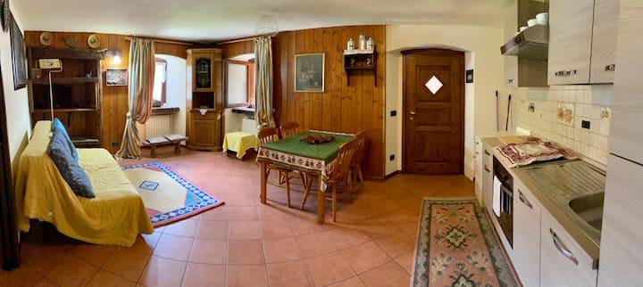 Intero appartamento-2 letti  Storica casa alpina