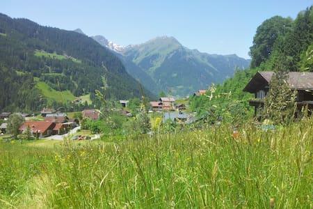 Natur pur - Erholung in den Bergen im Montafon - Gortipohl