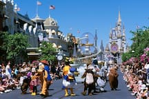 Have fun at Disney! Happiest place on Earth