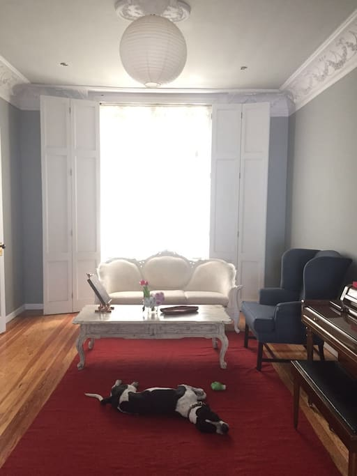 Spacious, high-celing living room. Pachino is our well-behaved dog.