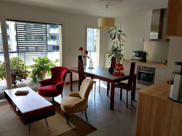Comfortable room in a modern new veggie flat