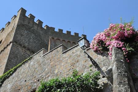 Castello Viterbese - Viterbese 2, sleeps 2 guests - Proceno - ปราสาท