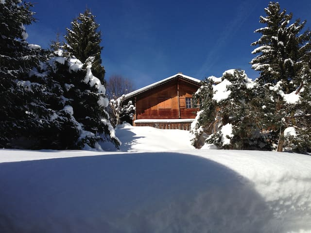 Cosy traditional Swiss Chalet near by Gstaad - Rougemont - Huis