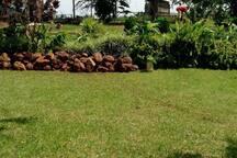 Naseem's African Paradise