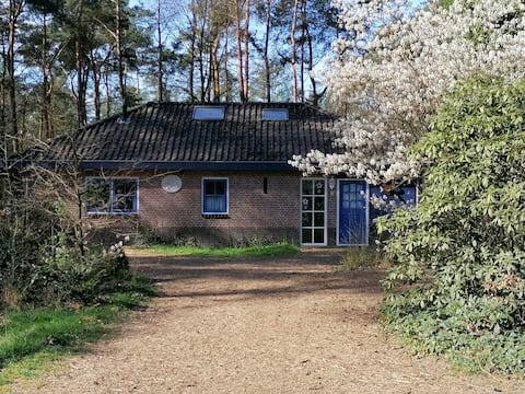 Heerlijk huis bij bos en heide in Otterlo