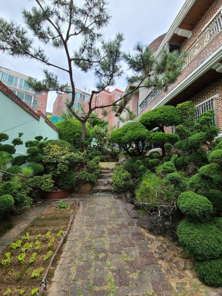 정원이 있는 언덕위의 집.