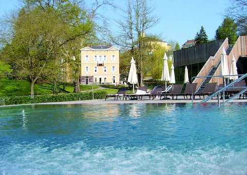 VILLA CLAR  in the green of the park-thermal spa