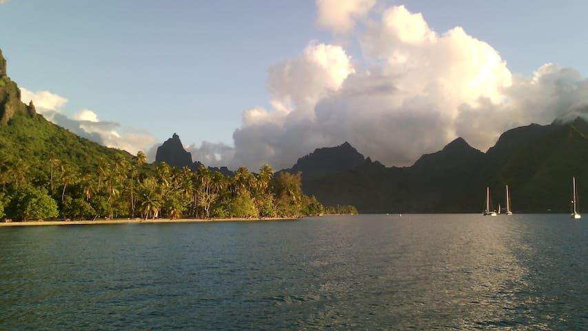 bungalow avec vue mer pleine nature - moorea - Bungalow