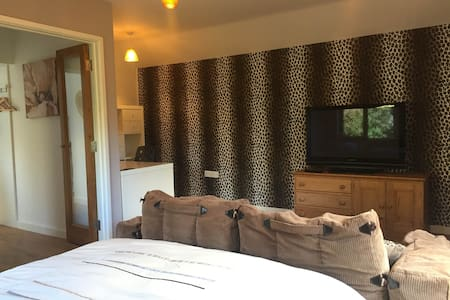 Spacious private ensuite room with own entrance - Salisbury - Altro