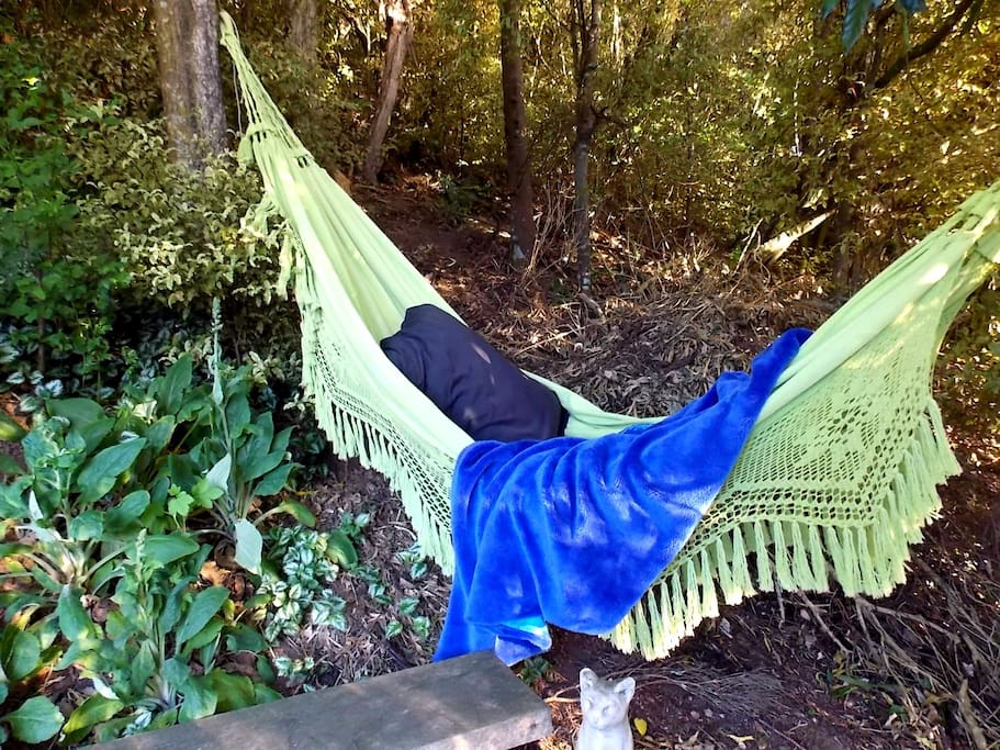 Hammock to rest and relax
