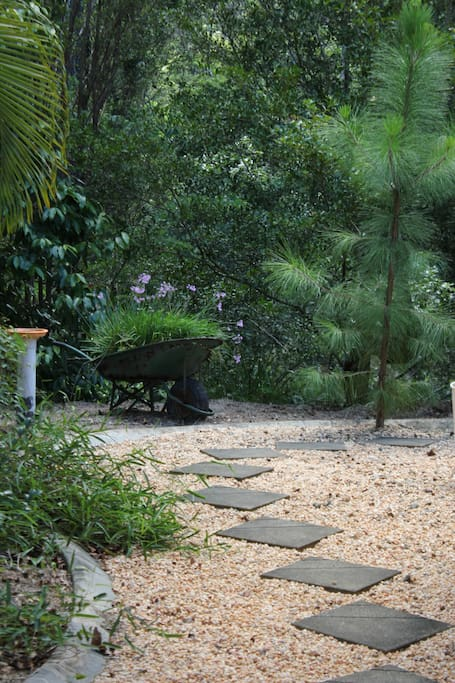 Pathway on the left side of the front of the house to your private wing of the 'Homestead'.