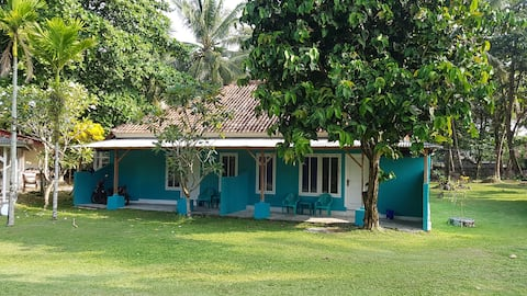 Karang Nyimbor Surf Hotel Green Room BB