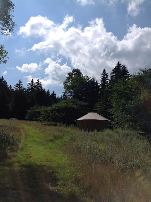 The path up to the yurt.